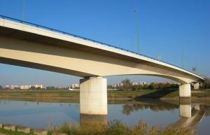 Puente Reina Sofía (Fotografía Grez)