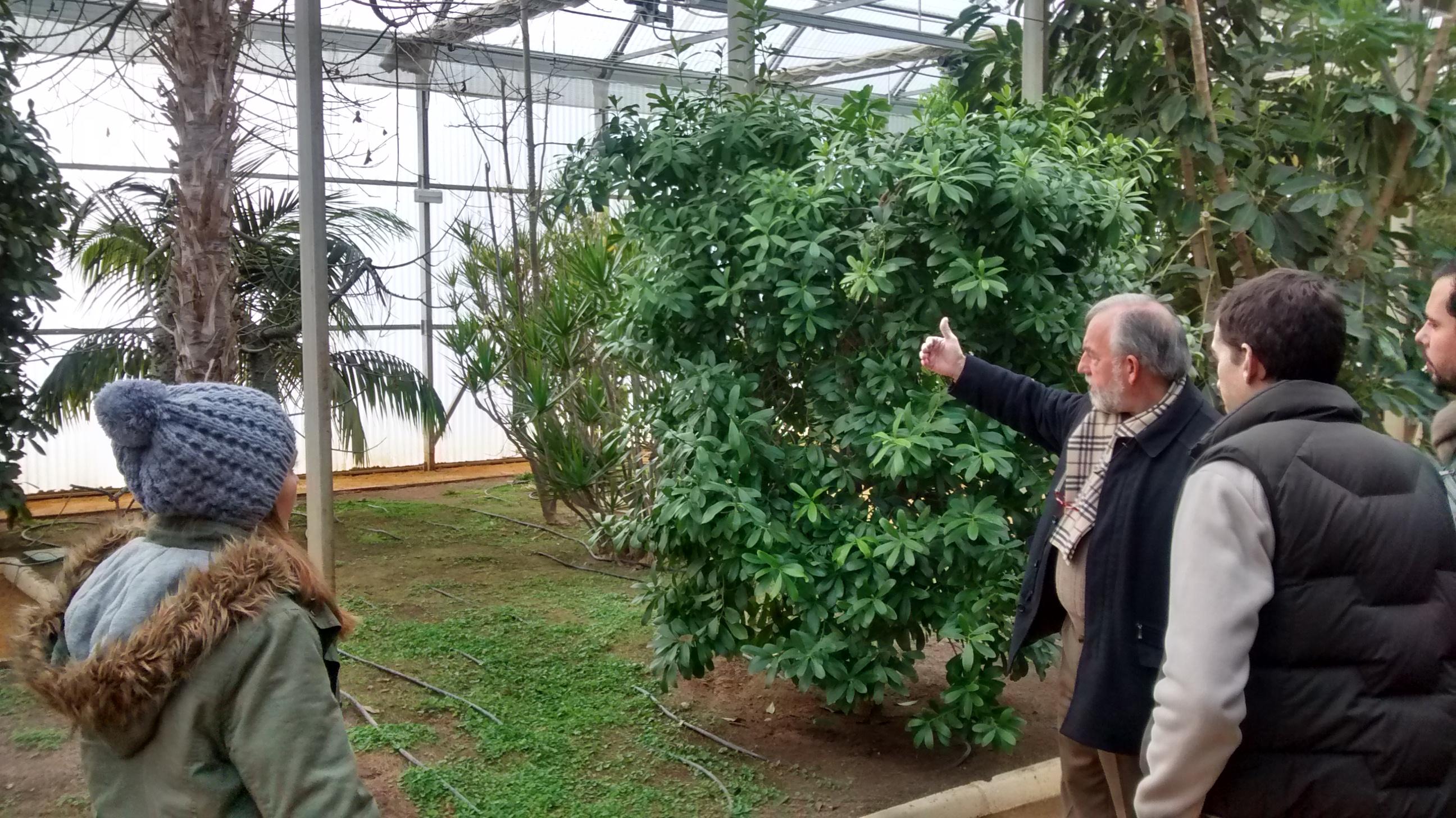 Visita al antiguo vivero de expo 39 92 y parque del alamillo for Vivero el botanico